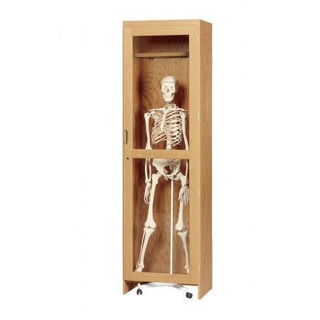 Skeleton Cabinet for Roll In Model