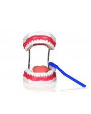 Teeth Hygiene Set With Tongue and Toothbrush