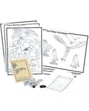Deluxe Classroom Owl Pellet Kit