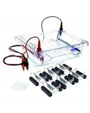 Walter EL-600 Electrophoresis Apparatus
