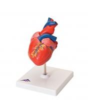 3B Classic Heart