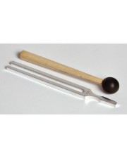 Tuning Fork & Striker Set