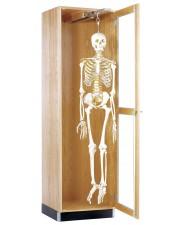 Hanging Skeleton Cabinet