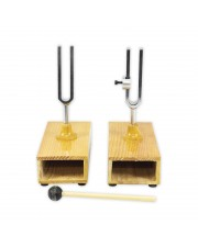 Sympathetic Differential Tuning Fork Set