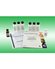 AP® Biology Investigation #13: Enzyme Activity