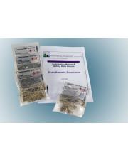Endothermic Reactions Demo Kit