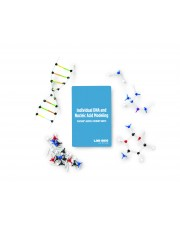 Individual DNA and Nucleic Acid Modeling