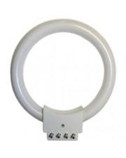 Fluorescent Ring Light Bulb 10W, 110V