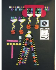 Protein Synthesis Manipulatives Kit
